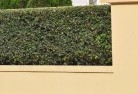 Forest Lake Decorative fencing 30
